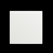 Белый пластик